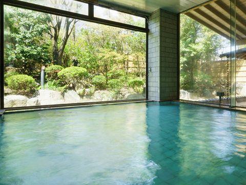 岩室温泉 ほてる大橋館の湯