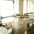 安田温泉保養センター・ホテルやすらぎ