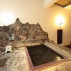 菱野温泉 上の湯 薬師館