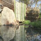 温泉旅館 水上荘