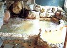 下呂の奥座敷 炭酸泉の宿 泉岳舘