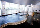 大和温泉ホテル <種子島>