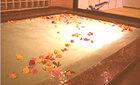 天然温泉付 ホテル プラトン