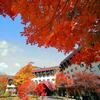 【特急列車付プラン】草津温泉 草津ナウリゾートホテル(びゅうトラベルサービス提供)