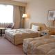 UENO CITY HOTEL_room_pic