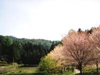 日本切り絵百景館・写真