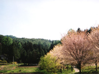 日本切り絵百景館