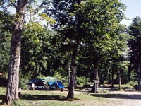 奥利根水源の森