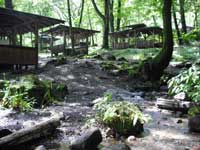 利平茶屋森林公園・写真