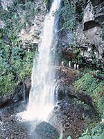 裏見の滝・写真
