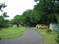 浅間高原くるみの森キャンプ場・写真
