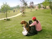 世界の名犬牧場・写真