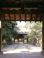 茂林寺・写真