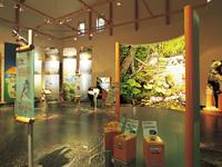 阿寒湖畔エコミュージアムセンター・写真