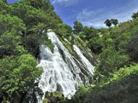 オシンコシンの滝・写真