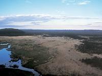 コッタロ湿原・写真