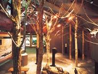 釧路湿原野生生物保護センター・写真