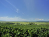 釧路湿原・写真