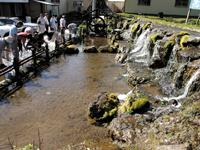 羊蹄山の湧き水・写真