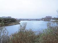 春採湖・写真