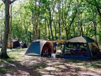 中標津町緑ヶ丘森林公園キャンプ場・写真