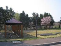 東山樹園・写真