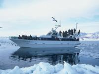 アルランIII世 流氷クルーズ・写真