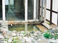 宮内温泉・写真
