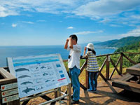 クジラの見える丘公園 展望デッキ・写真
