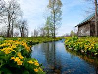 六花の森・写真