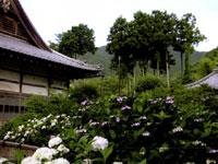 笹戸山長泉院(札所29番)・写真