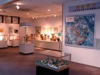 富士見市立水子貝塚資料館・写真