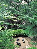 和紙の里 彫刻の森・写真