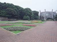 川口市立グリーンセンター・写真