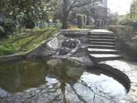 鴨川みずべの里・写真