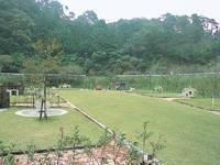 清和県民の森キャンプ場