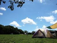 成田ゆめ牧場ファミリーオートキャンプ場・写真