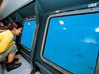海中観光船たてやま号・写真
