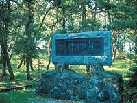 浜千鳥の歌碑・写真