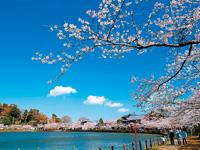 八鶴湖・写真