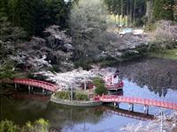 茂原公園・写真