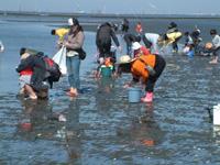 木更津海岸潮干狩り場(中の島公園)・写真