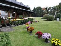 松戸市戸定歴史館・写真