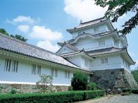 千葉県立中央博物館 大多喜城分館・写真