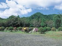内浦山県民の森・写真
