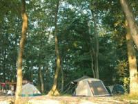 ホウリーウッズ久留里キャンプ村・写真