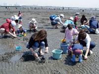 ふなばし三番瀬海浜公園 潮干狩り・写真