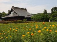 長福寿寺・写真