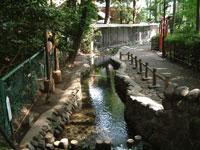 真姿の池・写真