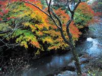 秋川渓谷・写真
